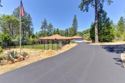 Placer County Single Family Home For Sale: 485 Pinetree Lane