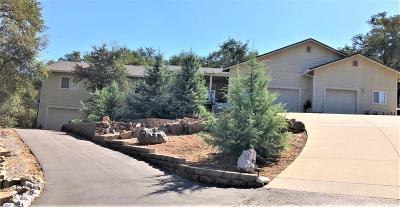 Mokelumne Hill Single Family Home For Sale: 5217 Lombardi