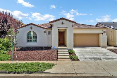 Patterson Single Family Home For Sale: 1201 Imperial Lily Drive
