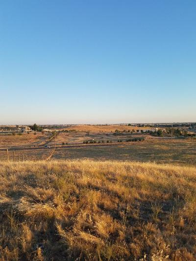 Sacramento County Commercial Lots & Land For Sale: 14001 Jackson Road