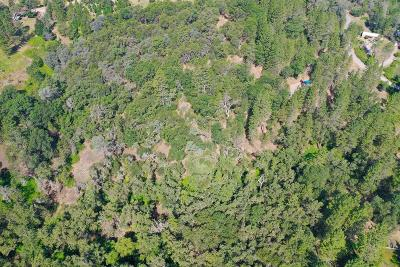 Grass Valley Residential Lots & Land For Sale: 10048 Pineapple Court