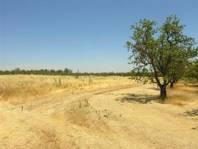 Yolo County Commercial Lots & Land For Sale: R1w Por Sec 9