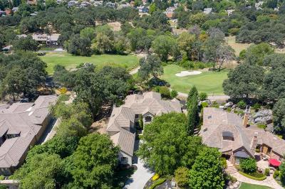 Placer County Single Family Home For Sale: 4010 Legend Drive