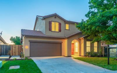 Rocklin Single Family Home For Sale: 6514 Mystery Mountain Way