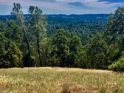 Garden Valley CA Residential Lots & Land For Sale: $124,900