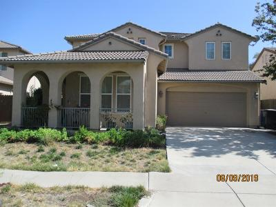 Patterson Single Family Home For Sale: 1448 Cliff Swallow Drive