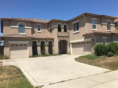 Elk Grove Single Family Home For Sale: 10000 Wyland Drive