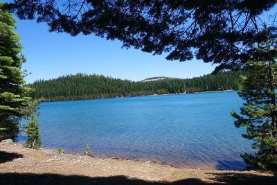 Plumas County Single Family Home For Sale: 2916 Little Grass Valley Road