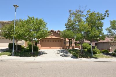 Folsom Single Family Home For Sale: 2220 Owl Meadow Street
