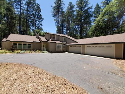 Nevada City Single Family Home For Sale: 12909 Banner Lava Cap