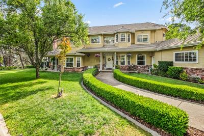 El Dorado Hills Single Family Home For Sale: 2634 Lakeridge Oaks Drive