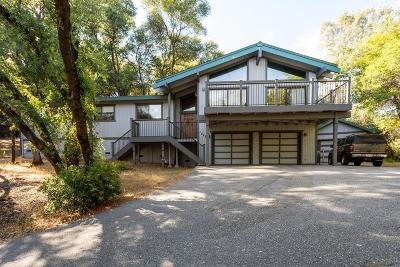 Auburn Single Family Home For Sale: 12521 Incline Drive
