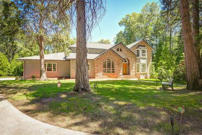 Nevada City Single Family Home For Sale: 13100 Banner Lava Cap Road