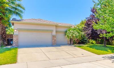 Roseville Single Family Home For Sale: 7609 Malta Drive