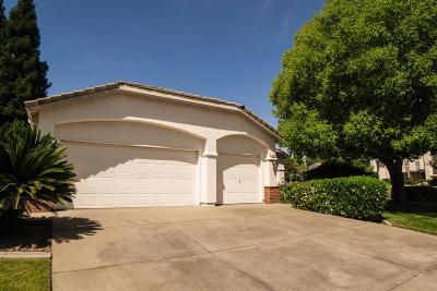 Folsom Single Family Home For Sale: 165 Dulverton Circle