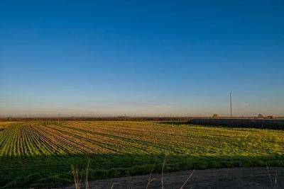 San Joaquin County Commercial Lots & Land For Sale: 10991 North Guard Road