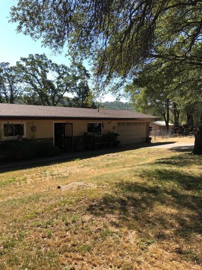 El Dorado Single Family Home For Sale: 5181 Samurai Court
