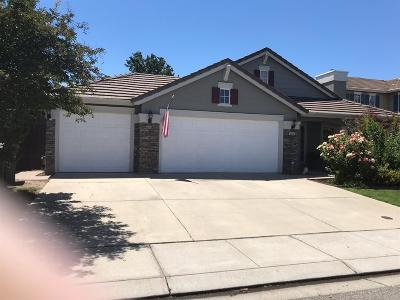 Modesto Single Family Home For Sale: 3313 Twin Brook Court