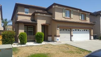 Elk Grove Single Family Home For Sale: 10149 Clairina Way