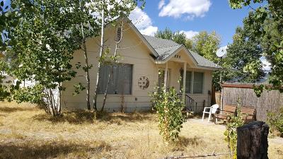 Plumas County Single Family Home For Sale: 220 Utah Street