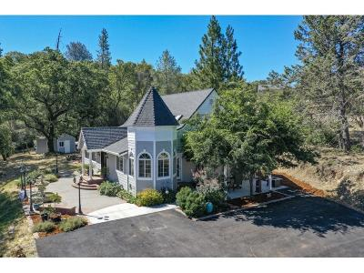 Grass Valley Single Family Home For Sale: 10645 Wolf Drive