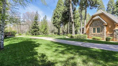 Grass Valley Single Family Home For Sale: 13101 Somerset Drive