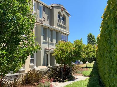 Hayward Condo For Sale: 1119 Martin Luther King Drive