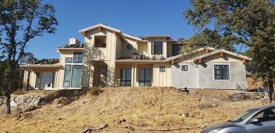 El Dorado Hills Single Family Home For Sale: 5218 Da Vinci Drive