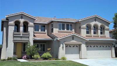 Davis, Woodland Single Family Home For Sale: 33922 Pintail Street