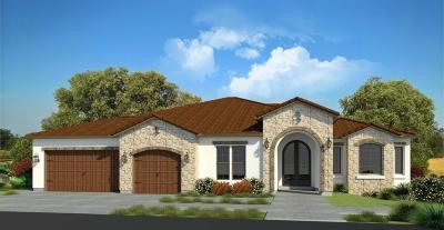 Folsom Single Family Home For Sale: 784 Lorena Lane