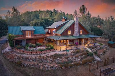 Nevada City Single Family Home For Sale: 14622 Rudd Road