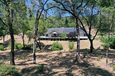 Nevada County Single Family Home For Sale: 11470 Shepard Road