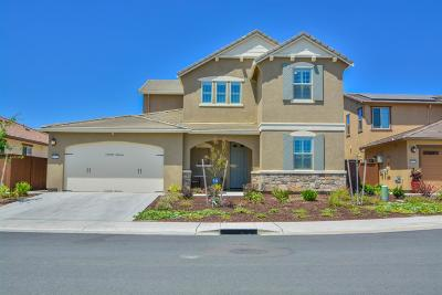 Elk Grove Single Family Home For Sale: 8749 Flute Circle