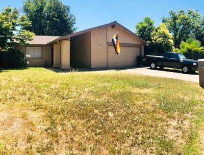 Sacramento Single Family Home For Sale: 9388 Big Horn Way
