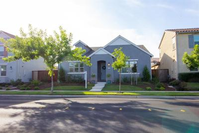 Single Family Home For Sale: 2632 Greger Street