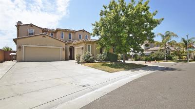 Elk Grove Single Family Home For Sale: 8396 Dandelion Drive