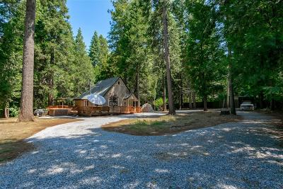 Pollock Pines Single Family Home For Sale: 1000 Oisin Lane