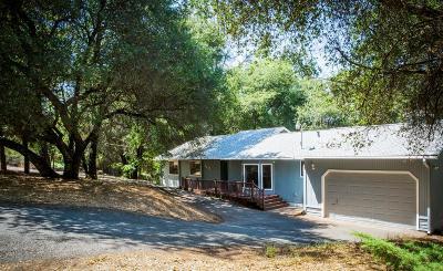 El Dorado Single Family Home For Sale: 4767 Windward Way
