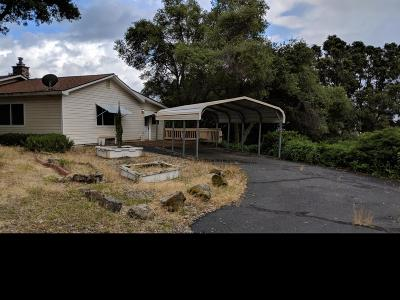 Placerville Single Family Home For Sale: 3180 Sand Ridge Road