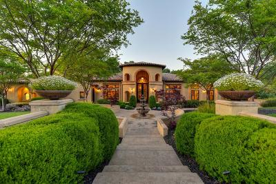 El Dorado Hills Single Family Home For Sale: 3866 Errante Drive