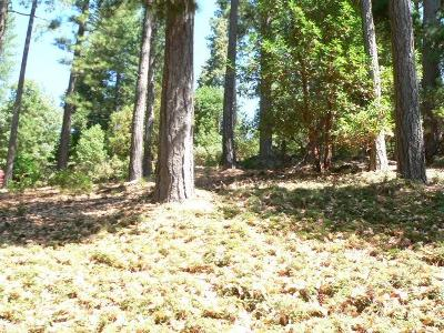 Pioneer Residential Lots & Land For Sale: 17495 Canyon View Court