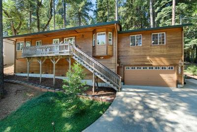 Pollock Pines Single Family Home For Sale: 6884 Onyx Trail