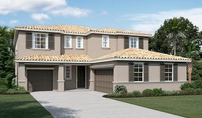 Sacramento Single Family Home For Sale: 8065 Crane Hawk Way