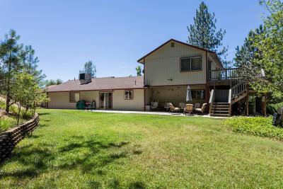 Placer County Single Family Home For Sale: 970 Coyote Mountain Drive