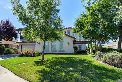 El Dorado Hills Single Family Home For Sale: 632 Armsmere Place