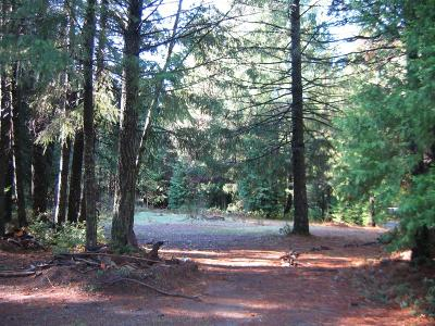 Georgetown CA Residential Lots & Land For Sale: $45,000