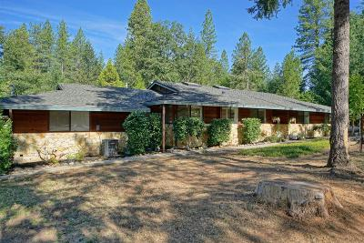 El Dorado County Single Family Home For Sale: 4401 Bluebar Drive
