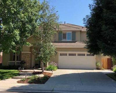 Elk Grove Single Family Home For Sale: 10339 Pedra Do Sol Way