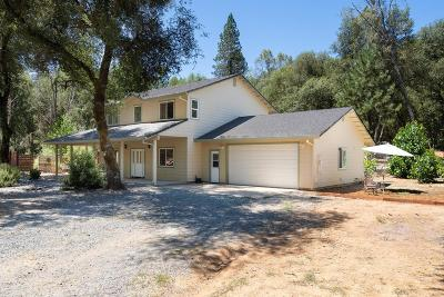 El Dorado County Single Family Home For Sale: 5665 Heavens Gate