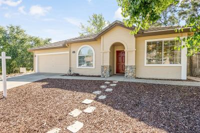 Folsom Single Family Home For Sale: 111 Larkin Circle